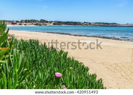 Beautiful landscape near of Nissi beach and Cavo Greco in Ayia Napa, Cyprus island, Mediterranean Sea. Amazing blue green sea and sunny day. - stock photo