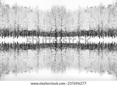 Beautiful landscape of glistening frost and snow covered trees reflected in frozen lake - stock photo