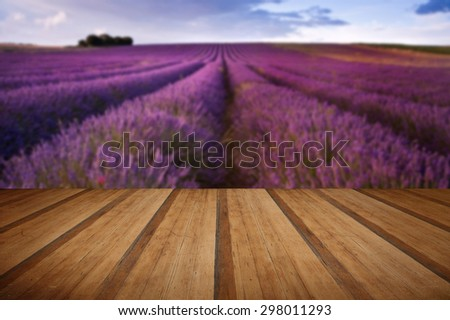 Beautiful landscape of lavender fields at sunset with dramatic sky with wooden planks floor - stock photo
