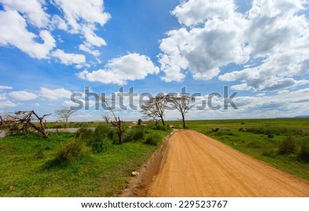 Beautiful landscape of Serengeti national park, Tanzania - stock photo