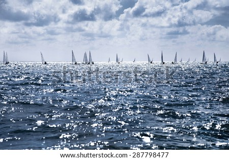 beautiful landscape of the sea with many sails on the horizon - stock photo