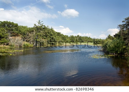 Beautiful landscape on the Island Fano - stock photo