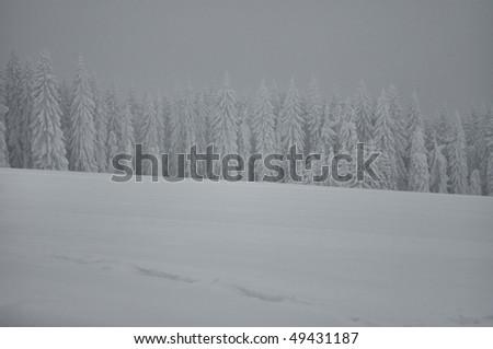 beautiful landscape on winter time - stock photo