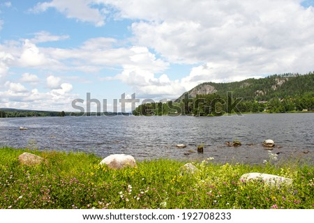 Beautiful landscape with fjord and summer flowers in Norway - stock photo