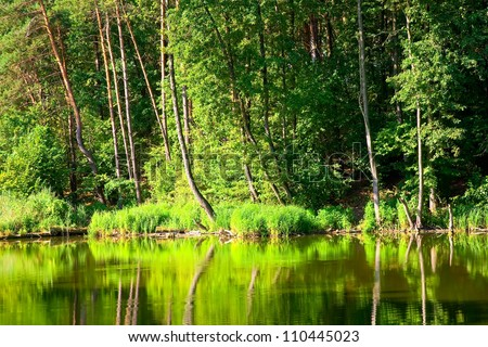 Beautiful landscape with forest lake - stock photo