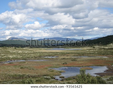 Beautiful landscape with mountains in Dovrefjell Norway - stock photo