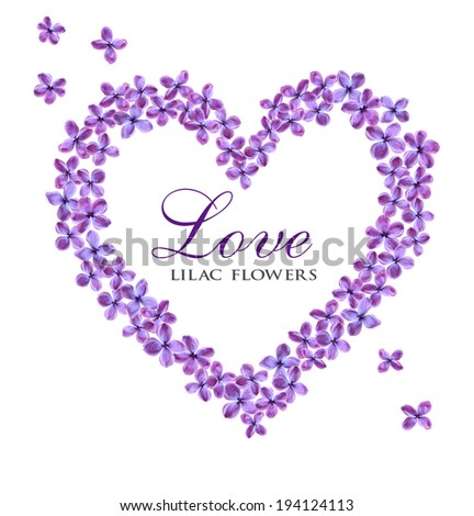 Beautiful lilac flowers in shape of heart isolated on white background, place for text  - stock photo