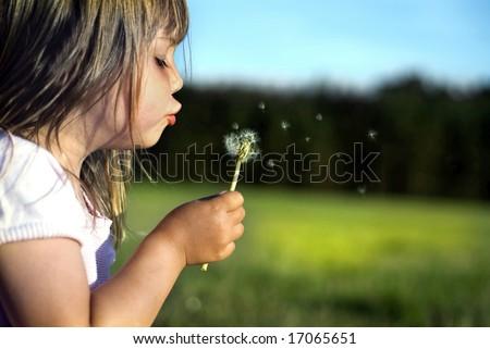Beautiful little girl blowing dandelion - stock photo
