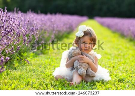 Beautiful little girl wearing white dress sitting in lavender field hugging stuffed animal - stock photo