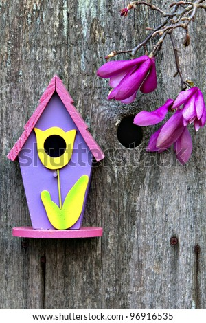 Beautiful little pink, purple and yellow birdhouse on rustic wooden fence with Tulip Poplar Tree blooms - stock photo