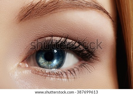 Beautiful macro shot of blue female eye with natural makeup. Perfect shape of eyebrows, brown eyeshadows and long eyelashes. Cosmetics and make-up. Closeup macro shot of fashion smoky eyes visage  - stock photo