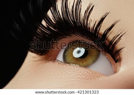 Beautiful macro shot of female eye with extreme long eyelashes and black liner makeup. Perfect shape make-up and long lashes. Cosmetics and make-up. Closeup macro shot of fashion eyes visage - stock photo