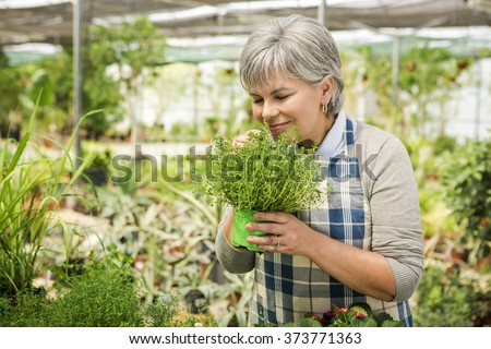 Beautiful mature woman holding fresh herbs and smelling them - stock photo