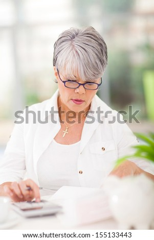 beautiful middle aged woman doing her accounts at home - stock photo