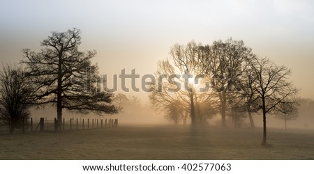 beautiful morning - stock photo