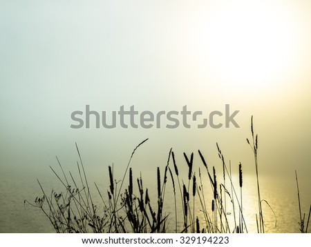 beautiful morning fog over a lake with grass in the foreground - stock photo