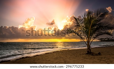 Beautiful morning on the caribbean beach in Dominican Republic - stock photo