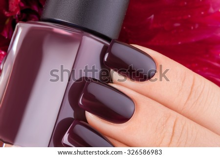 Beautiful nails and flower close-up, great idea for the advertising of cosmetics. - stock photo