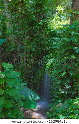 Beautiful natural background image of a tranquil waterfall in a lush green rainforest with dense foliage - stock photo