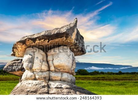 Beautiful natural stone park on sunset background - stock photo