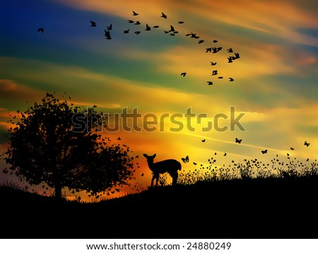 beautiful nature - stock photo
