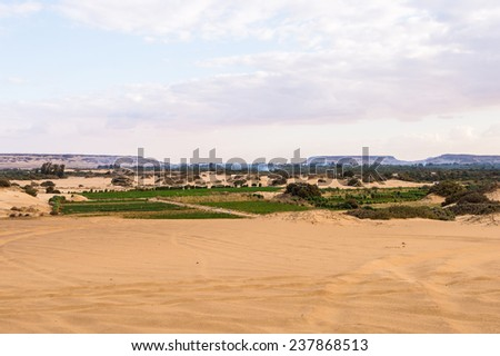 Beautiful nature of the Bahariya Oasis in Egypt - stock photo
