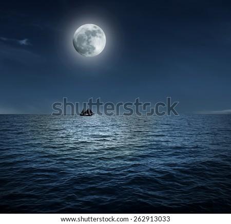 beautiful night ocean and small nautilus - stock photo