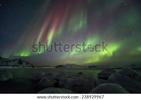 Beautiful Northern Lights over the Arctic frozen fjord - stock photo