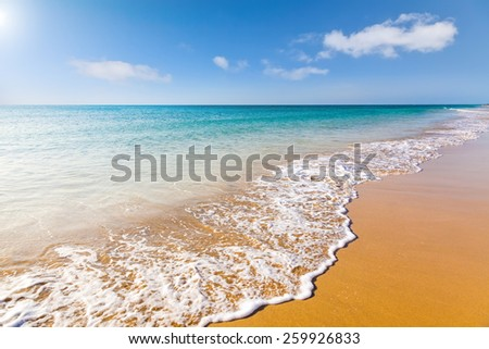 Beautiful ocean beach on Canary islands - stock photo