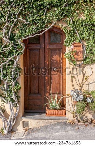 Beautiful old door surrounded by climbing plant from a Tuscan town. - stock photo