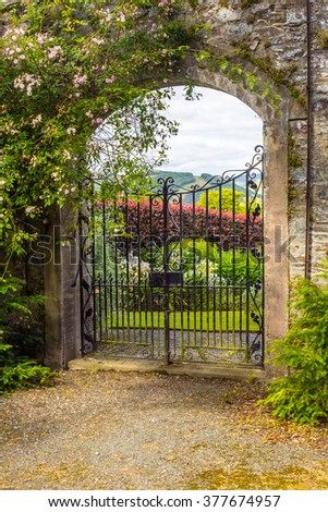 Beautiful, old garden gate with climbing roses - stock photo