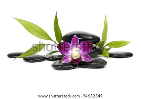 Beautiful orchid and bamboo plant with stacked stones - stock photo