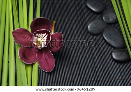 Beautiful orchid and stones with green plant on bamboo mat - stock photo