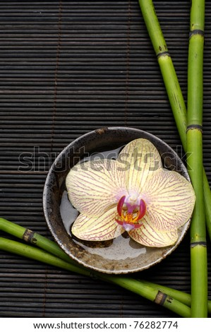 Beautiful orchid flower floating in bowl with bamboo grove on mat - stock photo