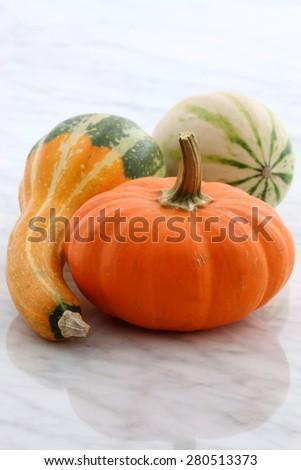 Beautiful organic assorted pumpkins or summer squash on carrara marble countertop  - stock photo