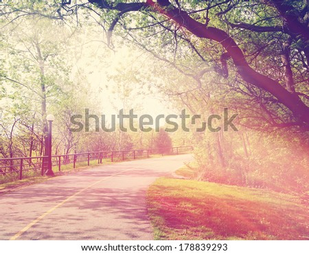 Beautiful outdoor park with rays of light - Instagram effect - stock photo