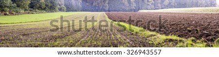 Beautiful panorama view of agricultural area with young seedling sprouting in one field and fertile soil resting in another. - stock photo