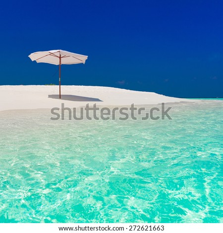 beautiful parasol and sunbed blue sun sea tropical nature background holiday luxury  resort island atoll about coral reef amazing  fresh  freedom snorkel adventure. Coconuts   - stock photo