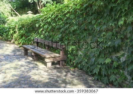 Beautiful park with path, hedges and bench - stock photo