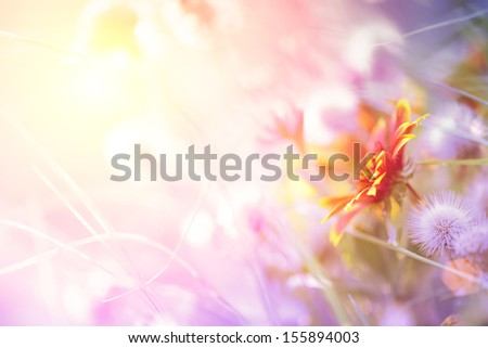 Beautiful pastel floral border beautiful blurred background (shallow depth of field) - stock photo