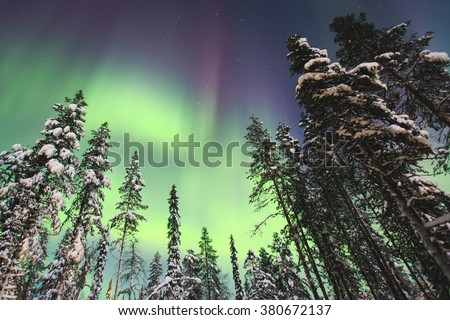 Beautiful picture of massive multicoloured green vibrant Aurora Borealis, Aurora Polaris, also know as Northern Lights in the night sky over winter Lapland landscape, Norway, Scandinavia - stock photo