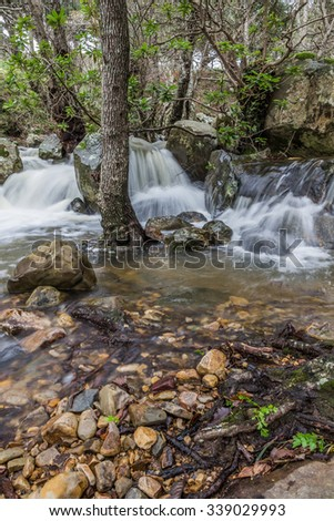 Beautiful picturesque stream running downwards with little cascades through the forest. Creek with drinkable, clear flowing water.  - stock photo