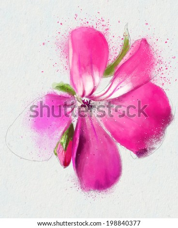 Beautiful Pink flower, Watercolor illustration - stock photo