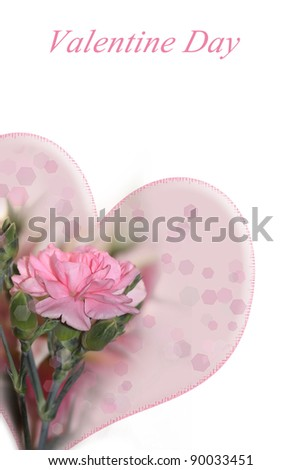 beautiful pink flowers. Valentine concept. - stock photo