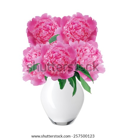 beautiful pink peony flowers in glass vase with bow isolated on white - stock photo