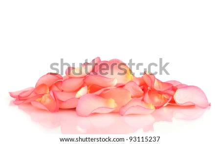 beautiful pink rose petals isolated on white - stock photo