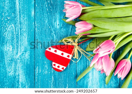 Beautiful pink tulips on blue wood background. - stock photo