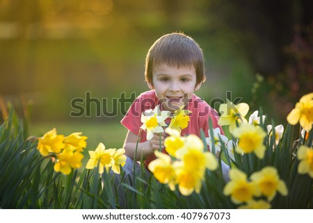 Beautiful preschool child, boy, sitting amongst daffodil flowers in a spring garden on sunset, back lit - stock photo