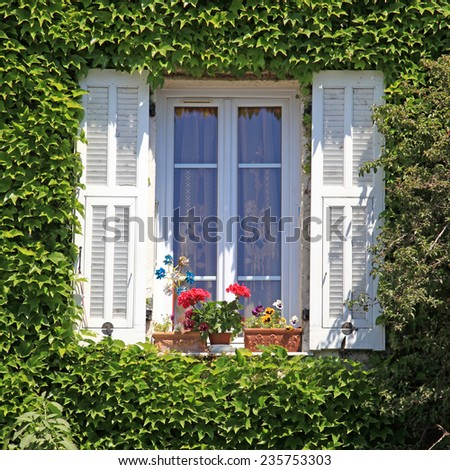 Beautiful provencal house window with white shutters, flower pot and ivy, Provence, France, square image - stock photo