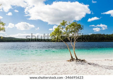Beautiful pure Lake McKenzie, Fraser Island, Australia - stock photo